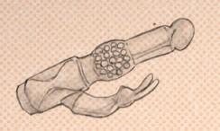 Vibraattori: kaikki, mitä pitää tietää vibraattoreista. Näin valitset oikean vibran.